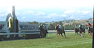 Gundagai_races